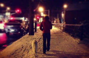 Walking home on a snowy night and empty but snow-packed sidewalk. (c) Margot Bloomstein.
